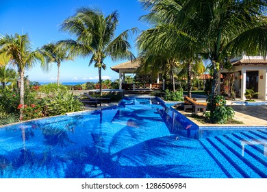 Tropical pool landscape