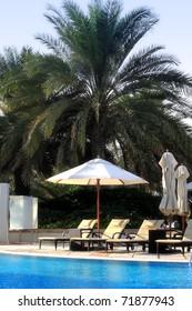Tropical poolside area