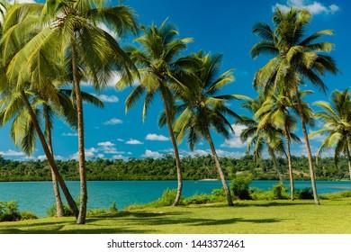 Tropical resort destination in Port Vila, Efate Island, Vanuatu, with beach and palm trees