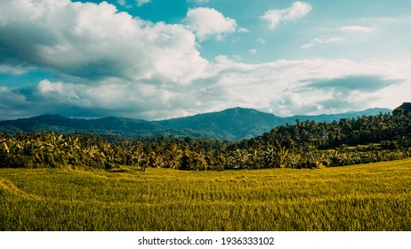 Tropical rural landscape with beautiful rice fields and mountains - Shutterstock ID 1936333102