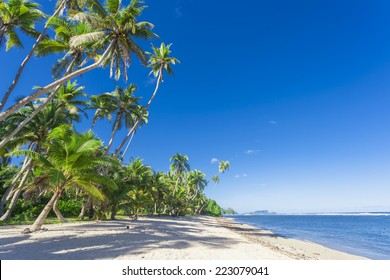 Tropical Samoa with white sandy beaches and coconut palms