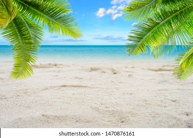 Tropical sand beach with palm leaves