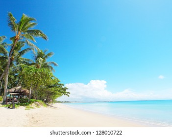 Tropical sandy beach with palm trees and calm Indian Ocean. Bali