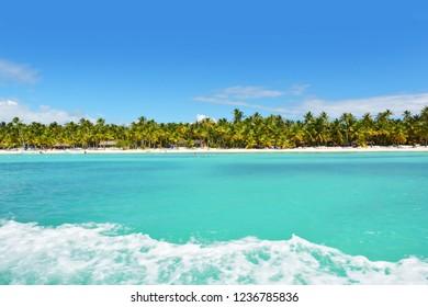Tropical Saona island in the Caribbean, tropical Paradise, turquoise sea, Dominican Republic