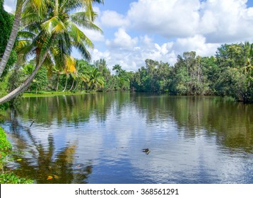 tropical scene around Vinales Valley in Cuba, a island in the caribbean sea