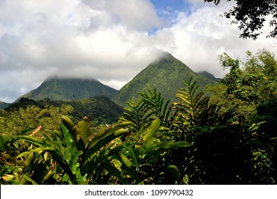 Tropical scene of Martinique mountains, Volcano Mount Pelee in the background, Lesser Antilles, Caribbean, rain forest in the foreground