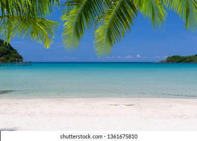Tropical sea on sunny day with the blue sky , swing for tourist and green coconut leafs upper view.