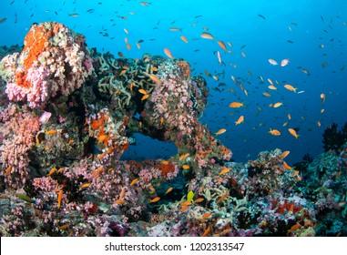 Tropical seascape, Indian Ocean, The Maldives.
