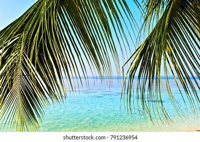 Tropical seascape on the island Vilamendhoo in the Indian Ocean, Maldives