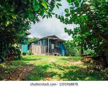 Tropical shack on Hawaii
