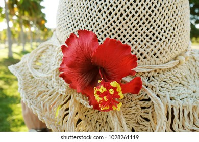 Tropical Straw Hat Hibiscus Female