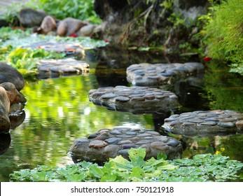 Pond Landscapes Hd Stock Images Shutterstock