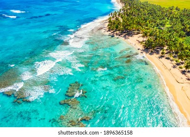 Tropical summer beach with coconut palm trees background. Aerial drone idyllic turquoise sea vacation background. Dominican Republic - Shutterstock ID 1896365158