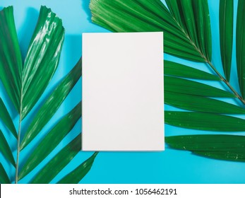 tropical summer flatlay and minimal concept from white blank copy space on center with palm leaf decoration on blue pastel background