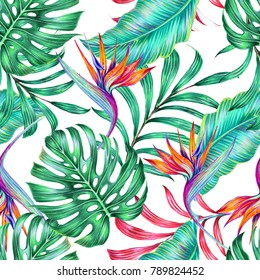 Tropical summer floral seamless pattern background with exotic flowers, palm leaves, monstera leaf, strelitzia, bird of paradise flower. Jungle botanical illustration