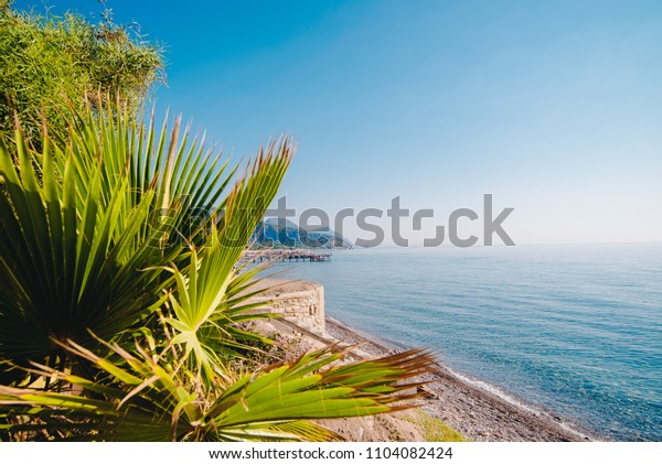 Tropical summer landscape with palma leaves, beach, sea and blue sky