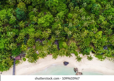 Tropical summer white sand bech with coconut palm tree background idyllic turquoise sea aerial view