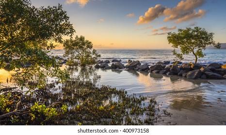 tropical sunrise mangroves Coral Sea beach Port Douglas