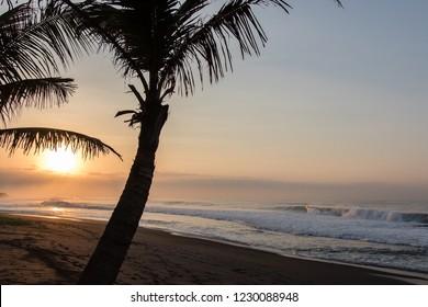 tropical sunrise waves