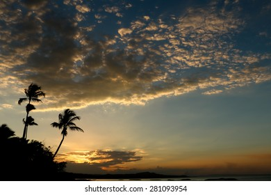 Tropical sunset. A beautiful sunset in the Dominican Republic against the background of palm trees