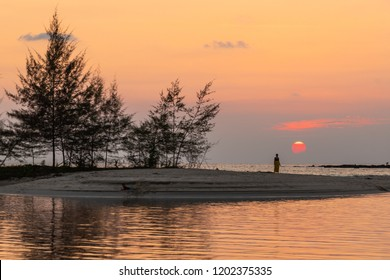 Tropical sunset over the horizon and filao trees, Koh Kood island, Thailand