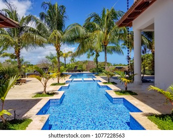 Tropical swimming pool landscape
