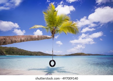 Tropical Tire Swing - St.John
