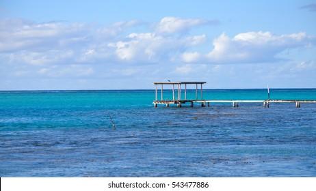 Tropical turquoise lagoon, Moorea, French Polynesia