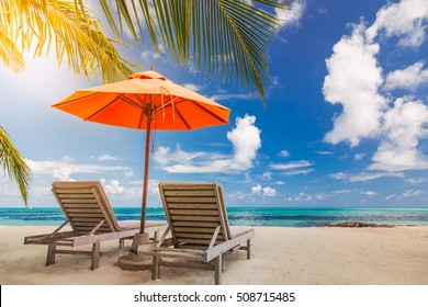 Tropical vacation background with sun beds and sun umbrella under the palm trees in sunlight. Idyllic beach scene