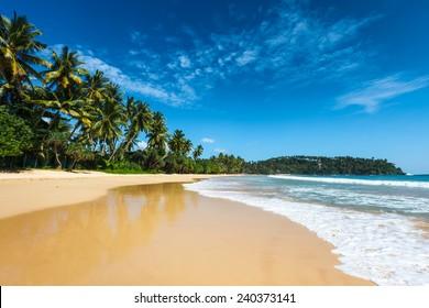 Tropical vacation holiday background - paradise idyllic beach. Sri Lanka