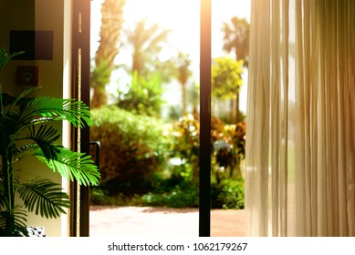 Tropical view background. Summer, travel, vacation and holiday concept. Open window, door and white curtain with blurred palm garden view from hotel. Exotic plants in sunny day, copy space.
