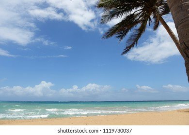 Tropical view of the ocean with palm trees in foreground and blue skies