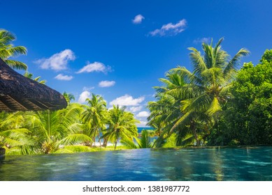 A tropical view from a pool on Praslin island resort, Seychelles