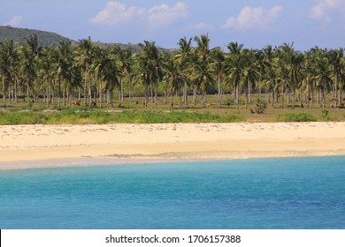 Tropical water, white sand palm trees Kuta Lombok. Kuta Lombok is an exotic paradise on the Indonesian island, with beautiful white sand beaches and crystal clear turquoise waters.