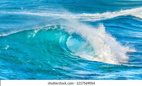 tropical wave curls as it breaks near the beach at Ala Moana Beach Park in Honolulu Hawaii Oahu