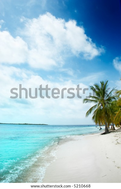 Tropical white sand beach with coconut trees