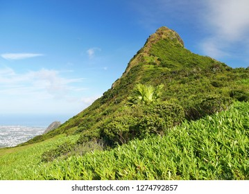 Tropical wild mountains of the island of Mauritius