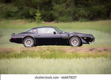TROSA SWEDEN June 22, 2017. Pontiac Firebird trans am, year 1979