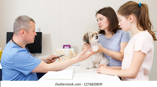 Troubled woman and preteen girl with little dog asking for professional advice from veterinarian