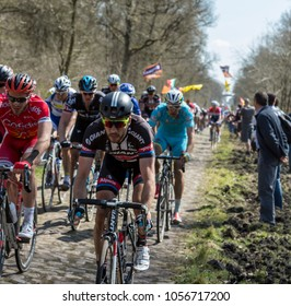 Trouee d'Arenberg,France - April 12,2015: John Degenkolb of Team Giant-Apecin,the winner of the race, riding in the peloton on the cobblestone road from the forest of Arenberg during Paris-Roubaix