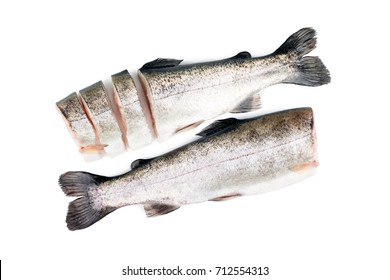 Trout fish isolated on white background. Top view