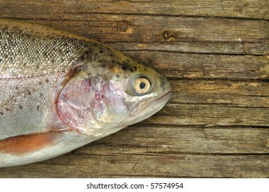 Trout fish on the wooden background