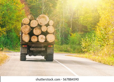 Truck with logs on an asphalt road in the sunlight