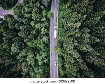 Truck passing on road trough a forest