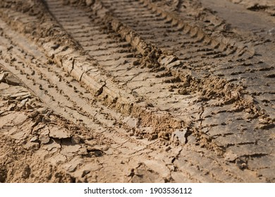 Truck tracks printed in the mud