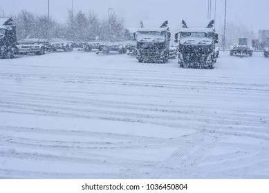 The trucks parked up during snowing condition unable to drive due to snow