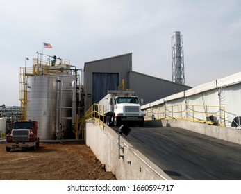 Trucks unload at an animal rendering plant.