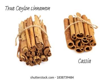 True Ceylon cinnamon and cassia cinamon isolated on white background.