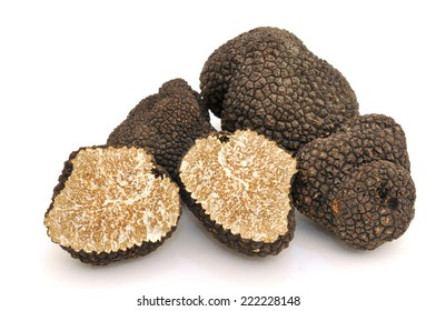Truffles collected in the Tuscan hills