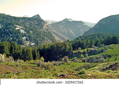 The truly beautiful but remote and hard-to-reach Tannourine Mountains of Lebanon. They have the largest population of Cedars of Lebanon in the country and extensive wildlife.
